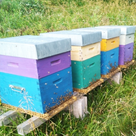 Les ruchers de la bresse