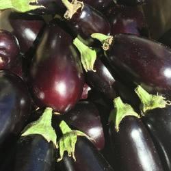 🍽👩🏼🌾Les plus belles aubergines du monde #lacamionnettedesfermiers #legumesbio #legumesdesaison #legumeslocaux #jevoislavieenvosges #gerardmer #penserglobalagirlocal #fermier #livraisonadomicile #bonheur #happiness #gratitude #vosgesaddict #maraicher #maraichagebio #vegetarian